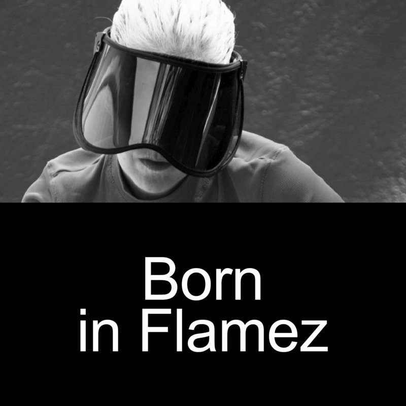 Born In Flamez
